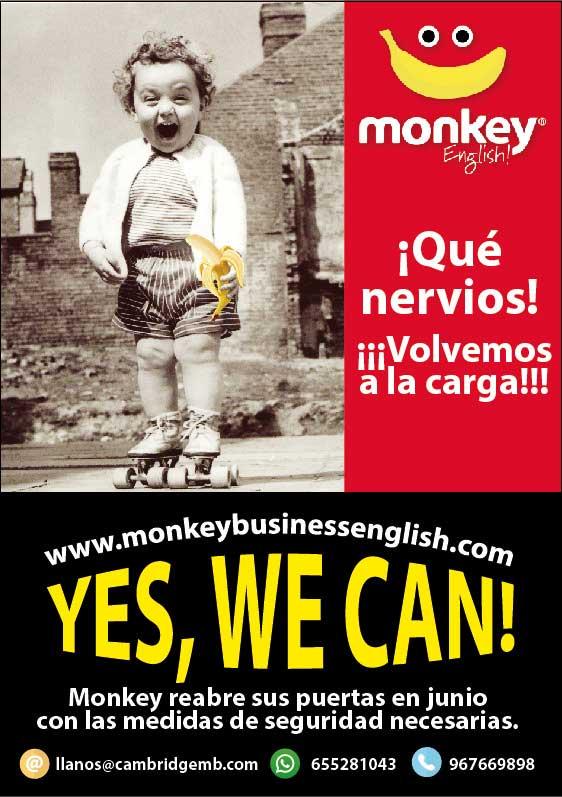 banner-monkey-movil